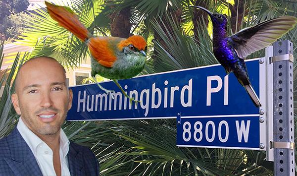 pinto bird